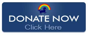 SaltSpring Therapeutic Riding Association - Donate Now Through CanadaHelps!